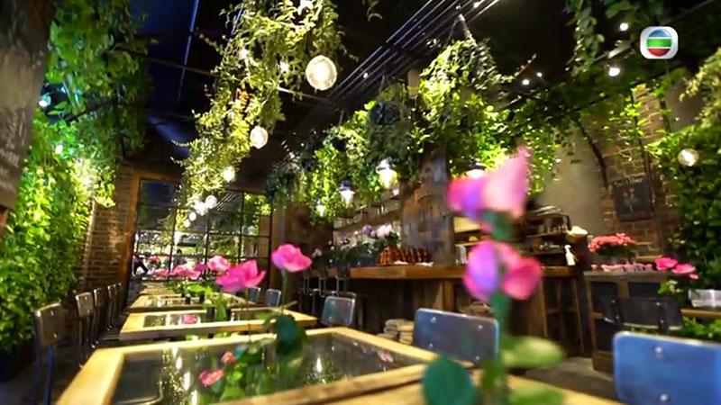 無綫 周遊東京 南青山 花店Cafe
