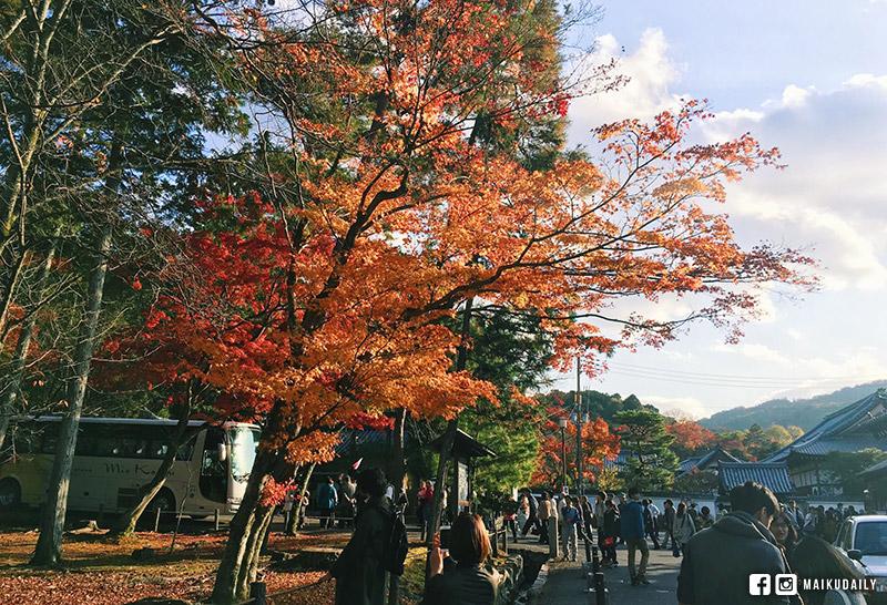 南禪寺 京都 紅葉 永觀堂