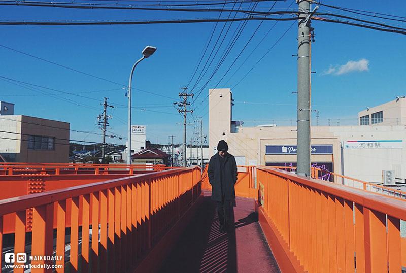 名古屋到日間賀島交通 河和港徒步