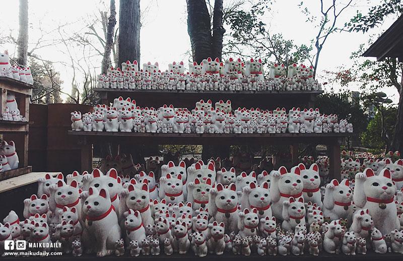 豪德寺 東京貓地方 數千隻招財貓排排企 祈福聖地 世田谷區