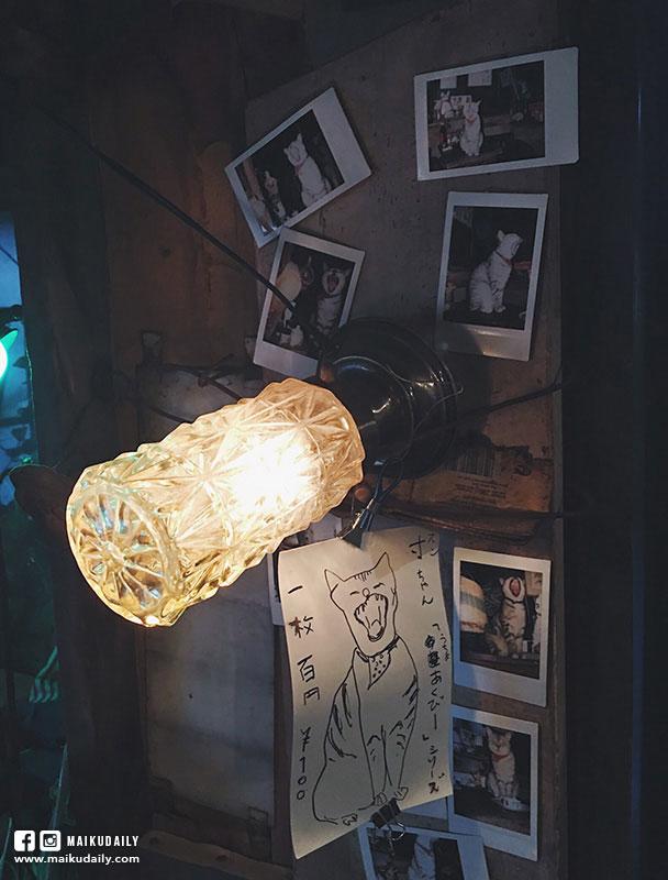 神樂坂 貓Cafe 【東京貓旅行】隱身市區秘密花園 宮崎駿世界般的神秘小店