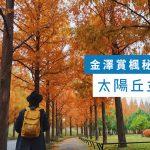 【 金澤紅葉 】金澤人才知道的私藏賞楓秘景 太陽丘 並木道