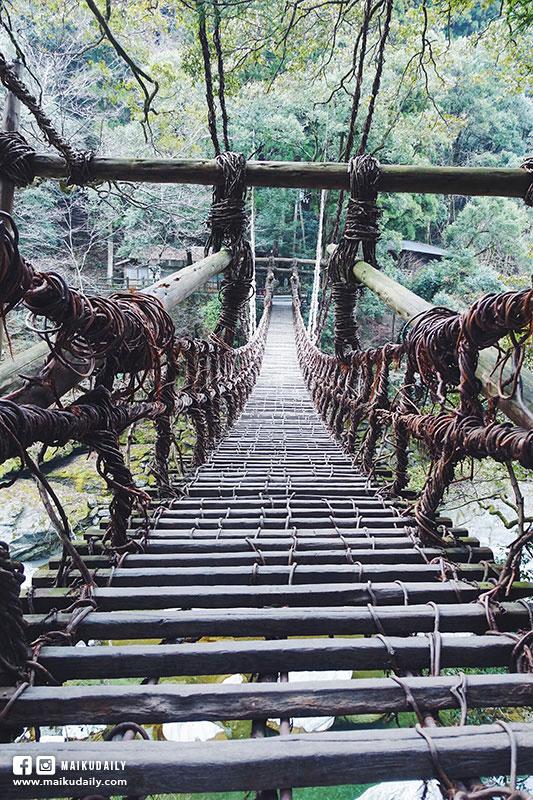 祖谷蔓橋 德島 日本三大秘境 三好市