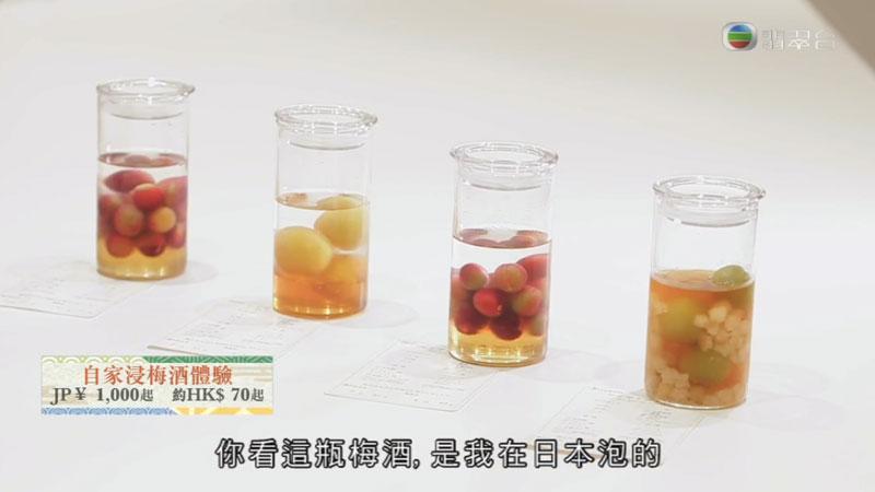 森美旅行團2 京都 CHOYA 蝶矢 自製梅酒體驗