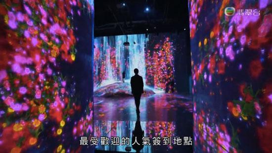 周遊東京2 台場 teamLab Borderless 互動光影美術展覽