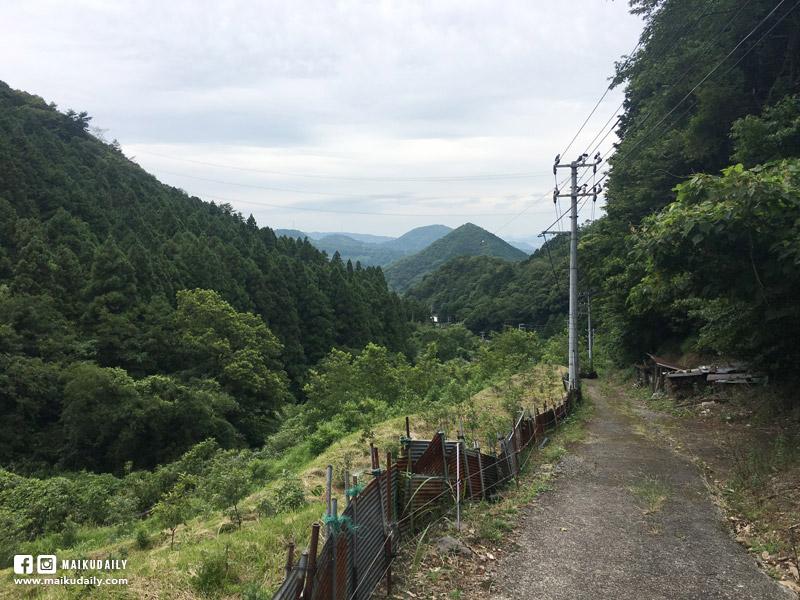 愛媛遍路 三坂峠