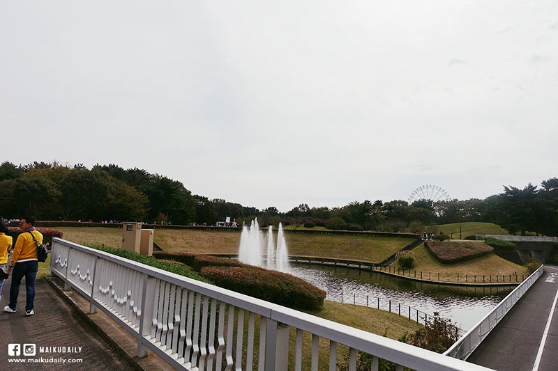 茨城常陸海濱公園