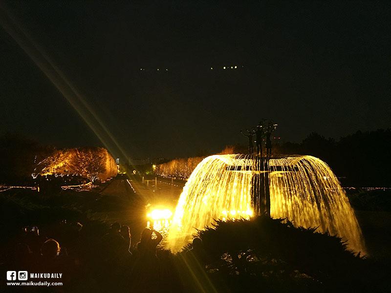 國營昭和紀念公園 銀杏點燈